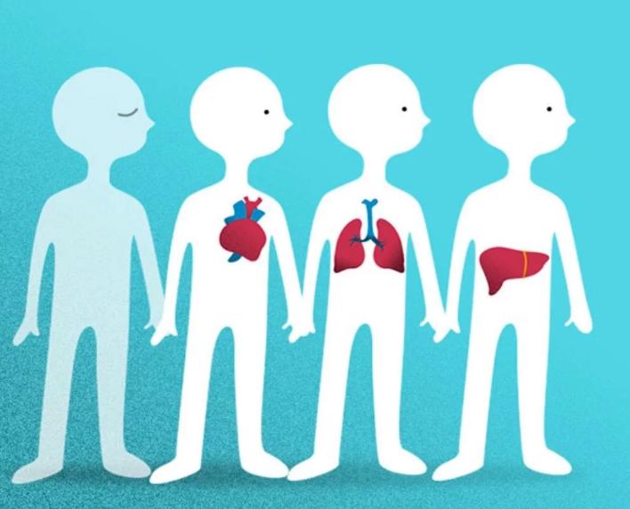 España, líder mundial en donación y trasplantes, celebra el 30 aniversario de la ONT con 48 donantes p.m.p.