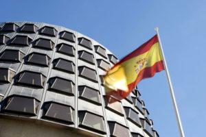 El Cermi pide a todos los partidos apoyar la reforma del artículo 49 de la Constitución