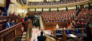 """El CERMI defiende en el Congreso que esta debe ser """"la legislatura de la discapacidad, en términos normativos"""""""