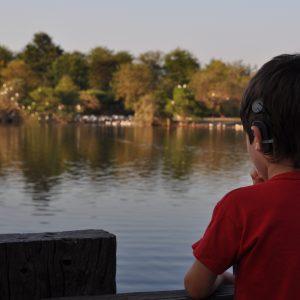 La fotografía fue tomada en la laguna del Parque Unzue, en la ciudad argentina de Gualeguaychú en abril de 2015. Nuestro hijo Luciano (el niño de la fotografía), quien padece de una hipoacusia bilateral de severa a profunda, disfruta de alimentar a los patos que allí viven, aunque en esta oportunidad éstos no se acercaron al borde. El niño en su espera se quedó contemplando la imagen, lo cual nos permitió captar este momento de pasividad en los primeros meses de uso de su implante coclear, al cual se está adaptando y con el que está descubriendo un universo nuevo, en este caso un silencio distinto. (Foto presentada a la edición 13 del  Concurso de Fotografía Digital del INICO - Fundación Grupo Norte)