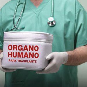 Un médico sujeta una caja en la que pone